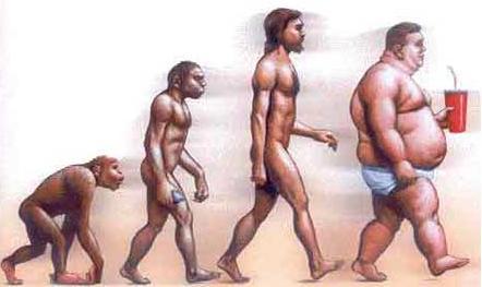 Obezita ako celosvetový problém, riešením je silový tréning pohyb.sk