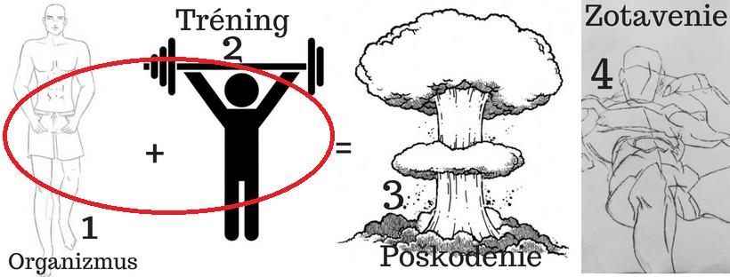 Princíp rastu svalov starý ako matuzalem 12 pohyb.sk