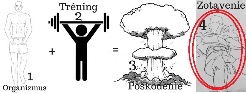 Princíp rastu svalov starý ako matuzalem 4 pohyb.sk